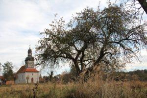 Dorfkirche und Streuobstwiese Rieth in Vorpommern